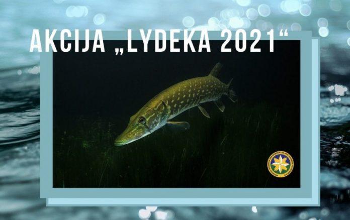 Lydeka 2021